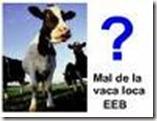 UE – Vaca Loca  :  Los productores y la industria discrepan sobre los efectos de suavizar las medidas de prevención.