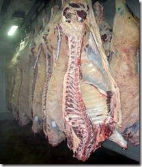 Asia eleva precios de la carne bovina.