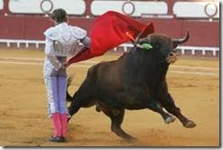 La CE dice que no es su competencia dictaminar sobre las corridas de toros.