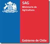SAG resuelve la eliminación de nueve vacas que ingresaron en forma ilegal al país.