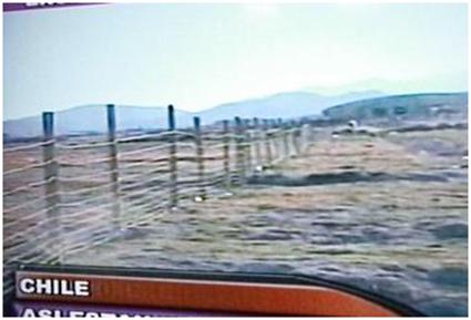 Según Chile, la cerca en la frontera es por la aftosa.