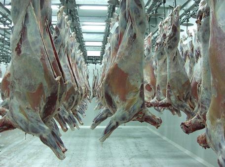 La carne ovina y su potencial