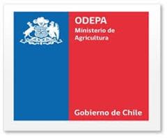 Estudio: Mercado de la carne y lana ovina en Chile